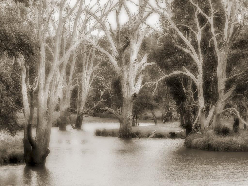Condamine River Pratten Queensland Australia