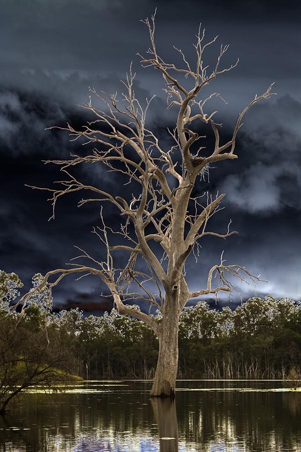 Lake Maroon Queensland Australia
